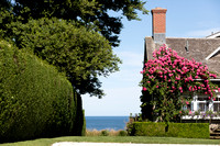 Rose Covered Cottage -Siasconset_6347 (CH)