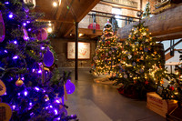 Festival of Trees_2016_06  (CH)
