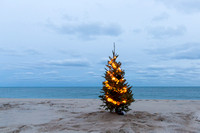 Christmas Tree Siasconset Beach with Scallop Lights (CH)