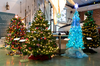 Festival of Trees_2016_03 (CH)