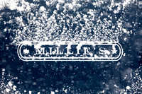 Millie's Sign in Snow (CH)